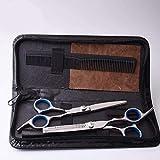 Cortadora de cabello de alta calidad 6 pulgadas Barber Professional Flat + Tooth Scissors Set Family Children Bangs Cut Thin Hairdressing Scissors (Color: Azul) -Azul