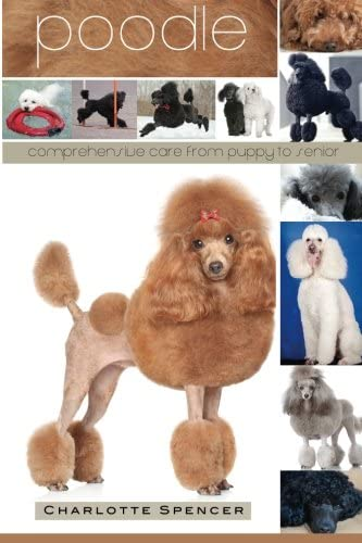 Poodle Comprehensive Care from Puppy to Senior Care Health Training Behavior Understanding Grooming product image