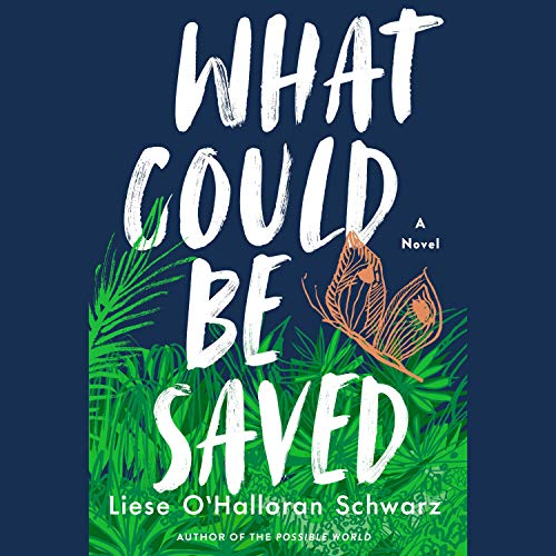 What Could Be Saved audiobook cover art