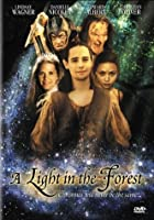 Light in Forest [DVD]
