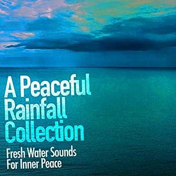 A Peaceful Rainfall Collection