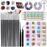 Kit de Accesorios Decoración Uñas Nail Art, 15 Pinceles para Uñas 5 de Lápiz de Punto Flores Secas para Uñas Diamantes de Imitación Foil Paillette Cintas Adhesivas Kit de Diseño Arte de Uña