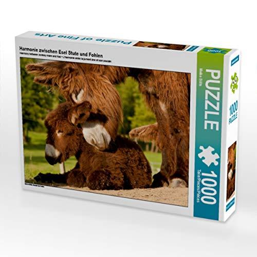 CALVENDO Puzzle Harmonie zwischen Esel Stute und Fohlen 1000 Teile Lege-Größe 64 x 48 cm Foto-Puzzle Bild von Meike Bölts