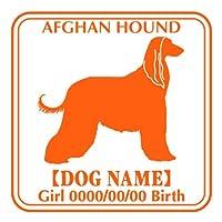 ワラ犬 アフガンハウンド ステッカー Eパターン ガール アクアブルー(濃い水色)