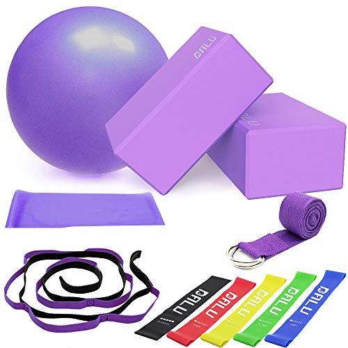 Yoga de 11 Piezas, Bloque de Yoga (9 × 6 × 4 Pulgadas), Anillo en D y Correa de Yoga de 10 bucles, Pelota de Pilates de 25 cm, Cinturones de Resistencia para Yoga (5-40 Libras)
