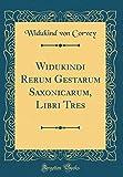 Widukindi Rerum Gestarum Saxonicarum, Libri Tres (Classic Reprint)