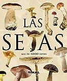 Setas (Enciclopedia Universal)