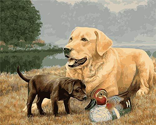 Gofission Paint by Numbers Dog Duck Grassland River, 16 x 20 pulgadas, kits de pintura numérica (Animal 1, con marco)