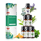 MAYJAM Essential Oils, Top 6 100% Pure Therapeutic Aromatherapy Oils Gift Set-6 Pack/10ml for Diffuser, Humidifier, Massage, Aromatherapy, Skin & Hair Care