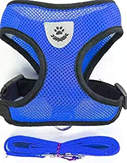 Step-in Dog Harness - All Weather Mesh, Step in Vest Harness for Small and Medium Dogs (Blue, L)