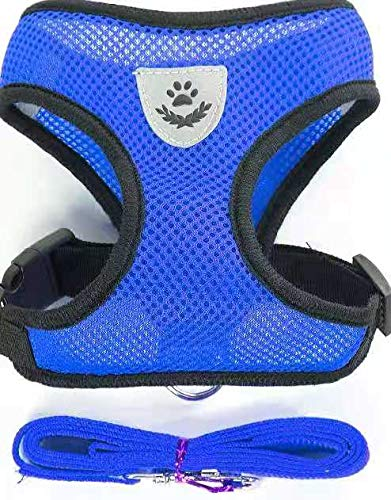 Step-in Dog Harness - All Weather Mesh, Step in Vest Harness for Small and Medium Dogs(Blue, S)