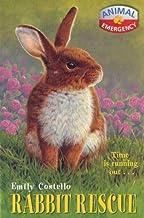 Animal Emergency 5: Rabbit Rescue (Animal Emergency)