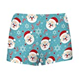 InterestPrint Kids' Cute Santa Clause, Candy Cane and Snowflake Boxer Brief Underwear S