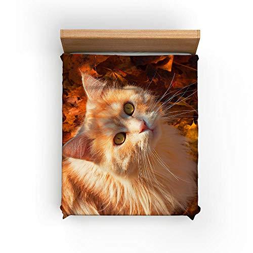 AHKGGM Bedding Juego de Funda de Edredón 200x200cm Gato Animal Amarillo 3 Piezas,para Cama de Matrimonio Microfibra Cierre de Cremallera 1 Funda de Nórdica y 2 Fundas de Almohada