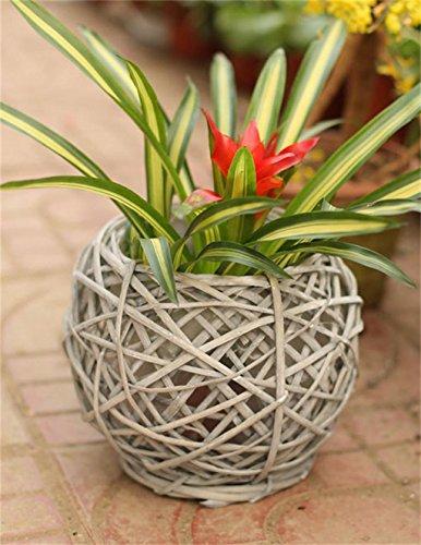 XYZ Retro rotondo Willow Vasi, Arte POT di fiore, piante Holder delicato durevole ( dimensioni : 18*21cm )