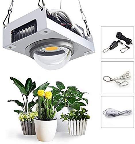 BAIJJ 100-Watt-LED-Wachstumslicht, COB-Pflanzenwachstumslampe, 5000K-Vollspektrum-Wachstumspflanzen-Flossenkühlkörper für Hydroponic Greenhouse Plant All Stage Growth Lighting