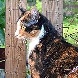 DONET Katzenschutznetz 2 x 10 m Drahtverstärkt, Maschenweite 30 mm