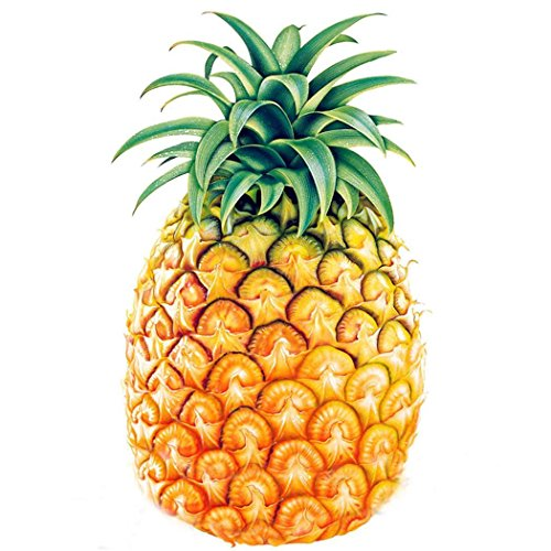 Swiftt 100 stücke Ananas Samen Süße Saftige Frucht Samen Seltene Bonsai Topfpflanze Hausgarten Blumensamen