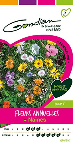 Gondian 165090 CP 2 Semences Fleurs Annuelles Naines Multicolore 1 x 8,1 x 16 cm
