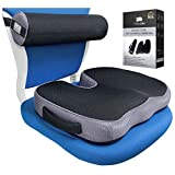 Seat Cushion and Lumbar Roll Combo for Office Chair - Memory Foam 3D Mesh - Pain and Pressure Relief for Lower Back, Sciatica, Coccyx, Butt, Tailbone - Posture Support Pillow for Desk, Car, Wheelchair