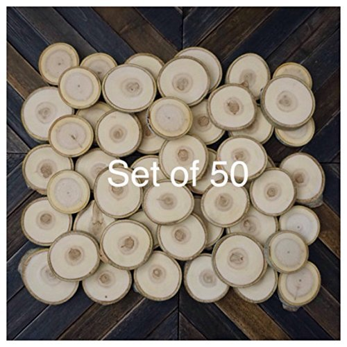 "Set of 50 2""-3"" Wood Slices Aspen - Wedding Favors - Tree Slices - Wood Discs - Tree Log Coasters - DIY Wedding - Branch Slices"