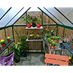Palram HG5504G Hybrid Hobby Greenhouse, 6' x 4' x 7', Forest Green 17 Virtually unbreakable 4 mm twin-wall polycarbonate roof panels block up to 99.9% of UV rays and diffuse sun light eliminating the risk of plant burn and shade areas Crystal clear polycarbonate side panels provide 90% light transmission Rust resistant aluminum frame with 84 sq. feet of growing space