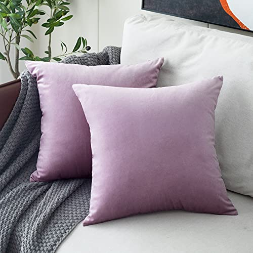 MUDILY Pack of 2 Velvet Supersoft Decorative Square Throw Pillow Covers Cushion Case Toss Pillowcases Decor for Sofa Chair Bedroom Car Lavender 16 x 16 Inch 40 x 40 cm