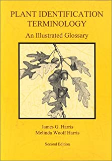 Plant Identification Terminology: An Illustrated Glossary