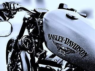 JBSporty ♤ Harley Sportster Iron 48 Roadster 72 Speedometer Relocation Kit w/Handlebar Clamp for indicator lights ♤ Original Style!