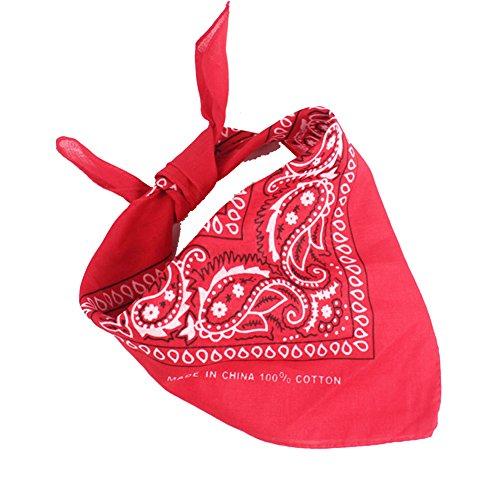 Qinlee Kleiner Quadratische Halstuch Multifunktional Taschentücher DIY Kopftuch Frühling-Sommer Taschentuch Bandana Haar Gestylten für Unisex (Rot)