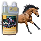 HORSEFOOD I plus dynamique et est bon pour la digestion, I 100% produit naturel pour votre cheval JE FAIS VOTRE CHEVAL CE QU'EST BON : l'huile de lin est un produit naturel pur d'Allemagne. 100% pur, frais et pressé à froid en qualité premium. PREMIU...