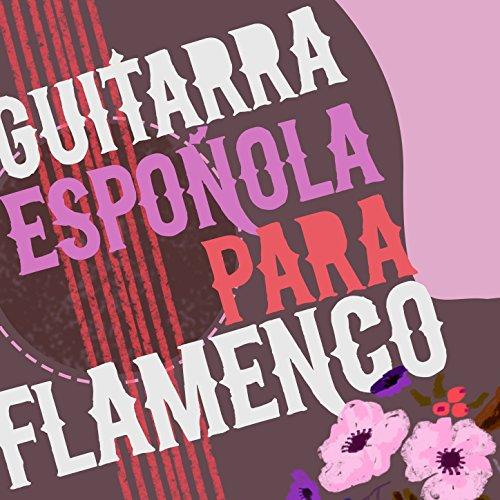 Flamenco Guitarra Zaragoza