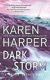 Dark Storm (South Shores, 6)