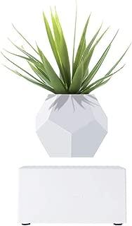 Levitating Plant Vase Pot for Home Office Decor, Wireless Rechargeable, Magnetic Levitation, Floating Air Bonsai Plant