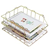 LACKINGONE 2 bandejas apilables para documentos, de metal, 30 x 25 x 14 cm, para oficina, escritorio, vestidor (dorado)