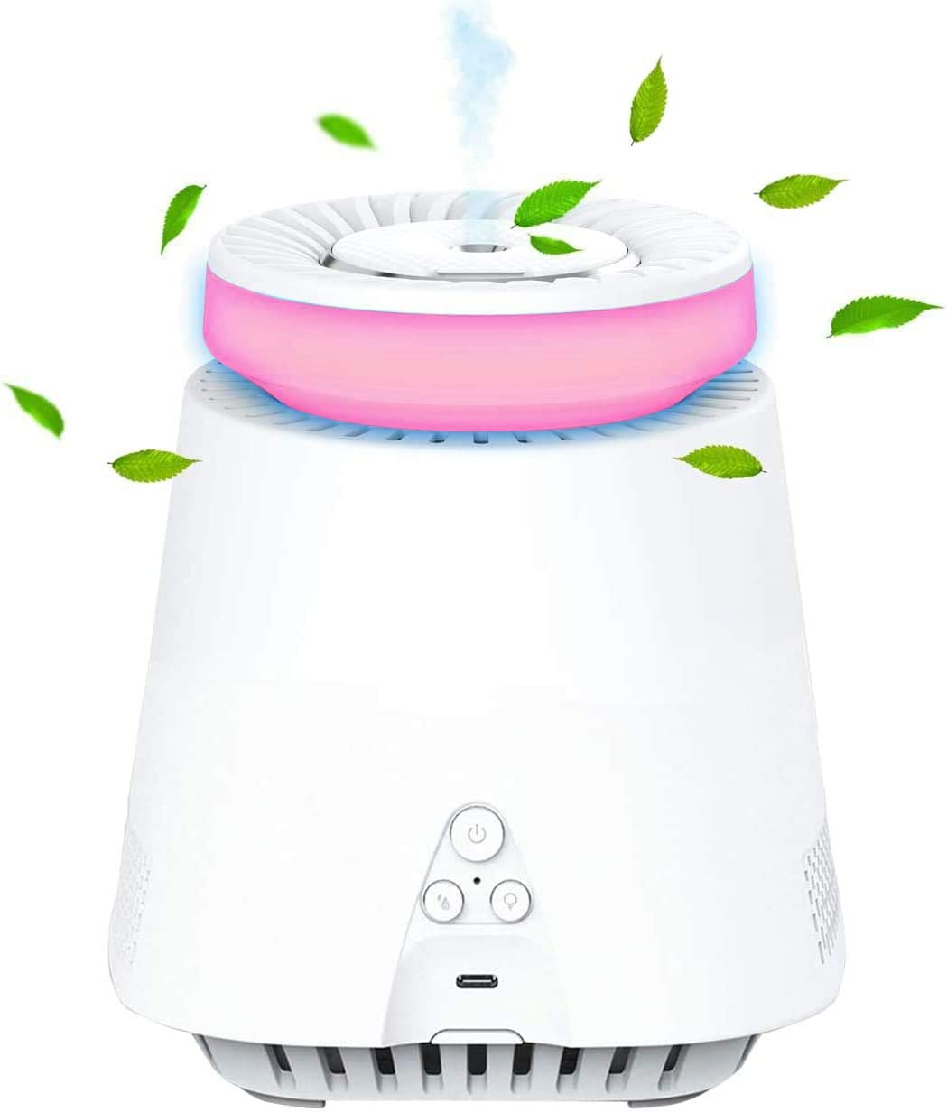 HEPA Air Purifier Portable 2-in-1, Low Noise Home Air Filtration with Mist Humidifier, Sleep Mode, Odors Dust, Bedroom Office, Night Light,Desktop USB Air Cleaner