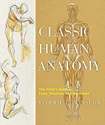 Classic human anatomy.