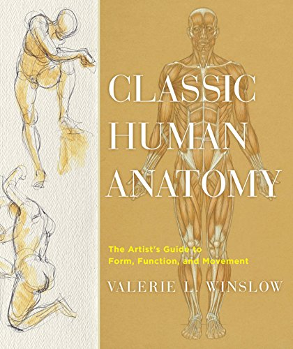 Classic Human Anatomy: The Artist's Guide to Form, Function, and Movement by Valerie L. Winslow