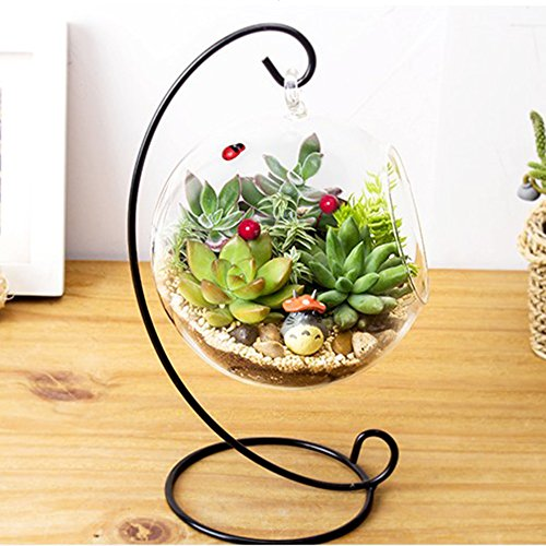 Opknoping Glas Vase-Hangende Glas Vaas Groot Terrarium met Frame voor Luchtplanten Succulente Planters Kleine Planten Glas Terrarium Home Decor