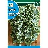 Semilla Col Kale - Rocalba