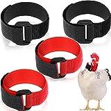 Xuniea 4 piezas de collar de gallo sin cuervo, collar de pollo, cuello de gallo, cinturón de nailon ajustable para evitar que los pollos griten molestar vecinos para pollos de mascotas, negro, rojo