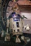 Star Wars - The Last Jedi - Poster - R2-D2 & Porgs +