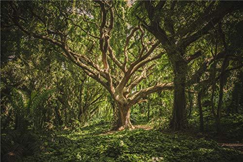 Puzzle Paisaje 35 Piezas, Viejo Árbol Grande En Bosque Virgen, Verde, Muebles De Arte Abstracto, Sala De Estar Cocina Mural Cartel Decoración Pintura - Marco De Fotos De Madera