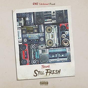 Still Fresh (Radio Edit) (Radio Edit)