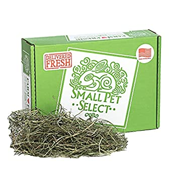 Small Pet Select 3Rd Cutting  Super Soft  Timothy Hay Pet Food 2 Lb.