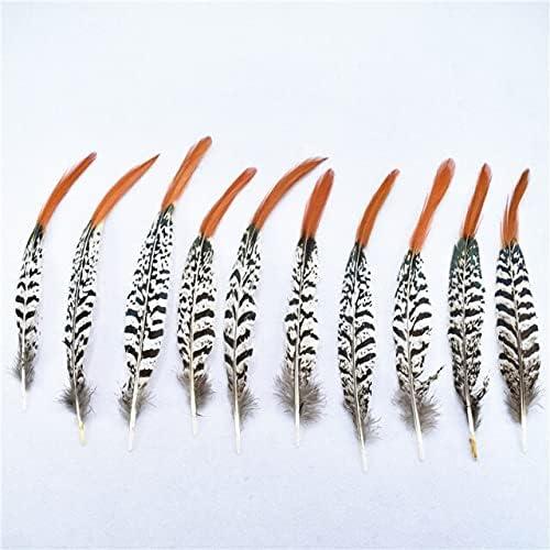 DORATA Hot 50Pcs lot 10-30CM for New sales Natural Regular discount Pheasant Jewel Feathers