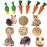 CJWDZ 12 Pcs Bunny Tooth Chew Toys, Rabbit Chew Toys,Hamster Chew Toys, Small Animals Play Balls, Natural Wood Sticks Pet Chew Toy for Rat,Gerbil,Rabbits, Chinchillas, Guinea Pigs for Teeth