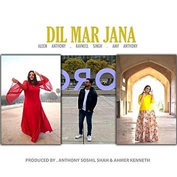 Dil Mar Jana (feat. Ravneel Singh)