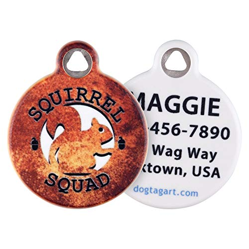 Dog Tag Art Cat or Dog Tag, Personalized Name Tag for Pets (Squirrel Squad) - Large