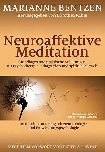 Neuroaffektive Meditation: Grundlagen und praktische Anleitungen für Psychotherapie, Alltagsleben und spirituelle Praxis